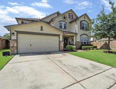 Cypress Single Family Home For Sale: 16219 Peach Bluff Lane