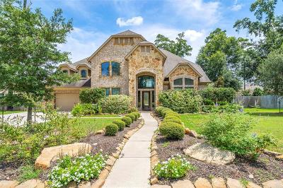 Tomball Single Family Home For Sale: 10142 Banestone Boulevard