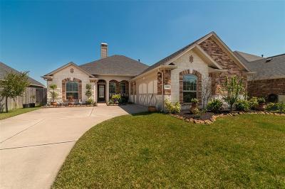 League City Single Family Home For Sale: 1525 Palo Duro Canyon Drive