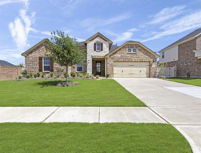 Rosenberg Single Family Home For Sale: 519 Round Lake Drive