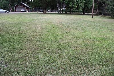 Tomball Residential Lots & Land For Sale: Lt 19 Texas Street