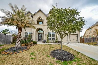 Pearland Single Family Home For Sale: 13433 Vintage Trail Lane