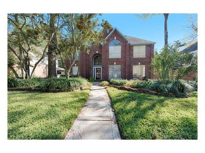 Single Family Home For Sale: 18 S Dragonwood Place