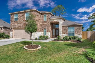 Hockley Single Family Home For Sale: 20639 Silver Tea Avenue