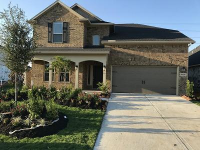 Fulshear Single Family Home For Sale: 28306 Calm Brook Lane