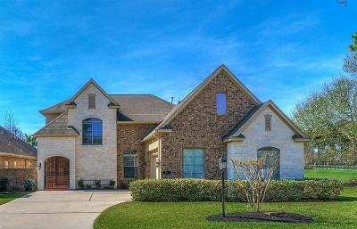 Single Family Home For Sale: 9333 Old River Court