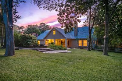 Montgomery Single Family Home For Sale: 217 E Blue Heron Drive