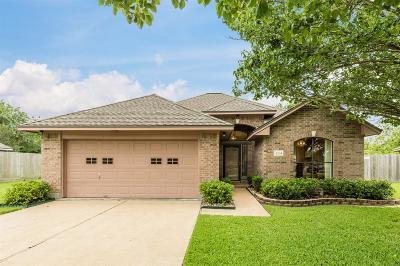 Lake Jackson Single Family Home For Sale: 234 Mango Street
