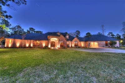 Huffman Single Family Home For Sale: 331 Reserve Ridge Drive