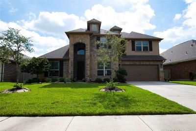 Tomball Single Family Home For Sale: 10303 Silver Shield Way