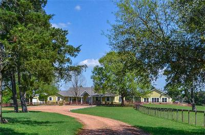 New Ulm Farm & Ranch For Sale: 0000 Hoppe Sisters Road