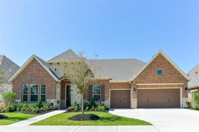 Fulshear Single Family Home For Sale: 30618 Indigo Falls Drive