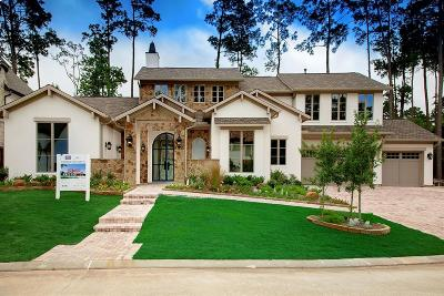 The Woodlands Single Family Home For Sale: 17 Honey Daffodil Place