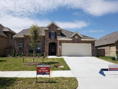 Houston Single Family Home For Sale: 14919 Waterside View Court