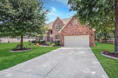 Conroe Single Family Home For Sale: 10220 S Summerlin