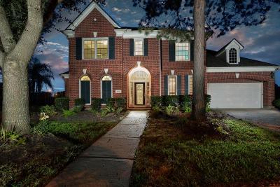 Houston Single Family Home For Sale: 16615 Blue Vista Drive