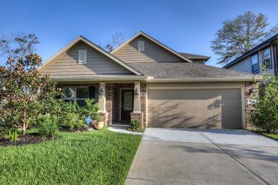 New Caney Single Family Home For Sale: 23411 Banks Mill Drive