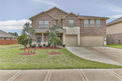 Tomball Single Family Home For Sale: 22814 Dale River Road