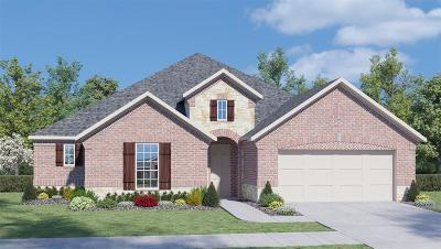 Conroe Single Family Home For Sale: 14101 Emory Peak Court