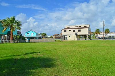 Galveston Residential Lots & Land For Sale: Lot 23 & 25 Curlew Road