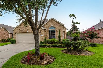 Pearland Single Family Home For Sale: 2410 Alamanni Drive