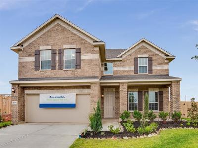 Manvel Single Family Home For Sale: 2602 Newport Lake Boulevard