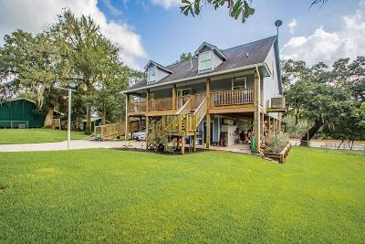 Brazoria Single Family Home For Sale: 1313 County Road 244a Road
