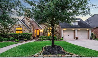 Katy Single Family Home For Sale: 28503 Blue Holly Lane