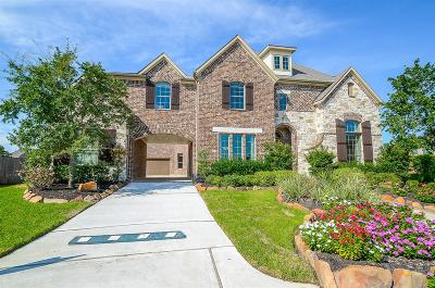Katy Single Family Home For Sale: 1114 Fragile Sail Court