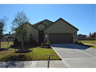 Katy Single Family Home For Sale: 3206 Francisco Bay