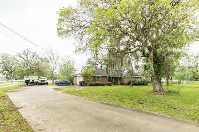 Brazoria Single Family Home For Sale: 1509 County Road 654d