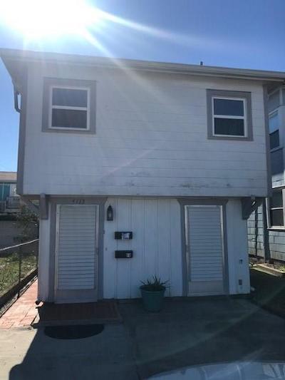 Galveston Rental For Rent: 4115 Avenue T 1/2