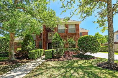 Friendswood Single Family Home For Sale: 311 Eagle Lakes Drive