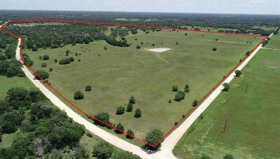 Ledbetter TX Farm & Ranch For Sale: $1,433,800