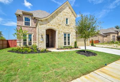 Porter Single Family Home For Sale: 25203 Birchwood Springs Avenue