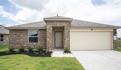 Rosenberg Single Family Home For Sale: 1814 Welsh Canyon Drive