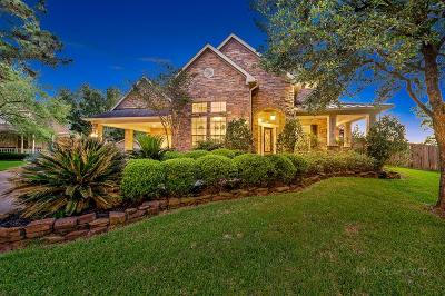 Katy Single Family Home For Sale: 6453 Sycamore Street