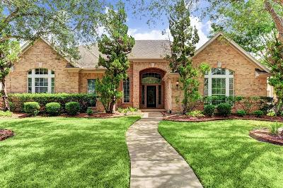 Houston Single Family Home For Sale: 1507 Darnley Lane