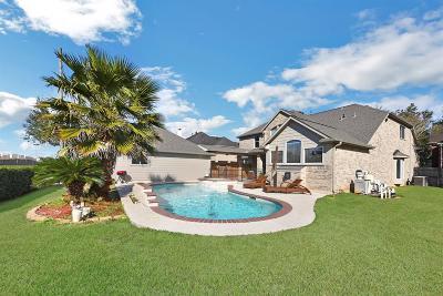 Missouri City Single Family Home For Sale: 4603 Collington Court