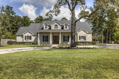 Spring Single Family Home For Sale: 27806 Newport Lane