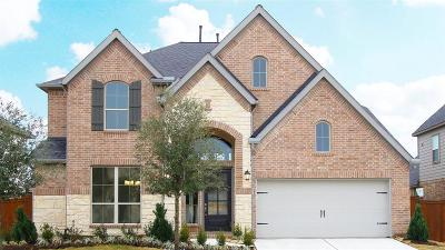 Katy Single Family Home For Sale: 6923 Red Oak Drive