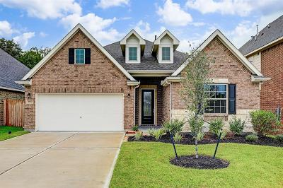 Alvin Single Family Home For Sale: 1670 Maggie Trail Drive