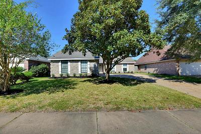 Houston Single Family Home For Sale: 4918 Brownfields Court
