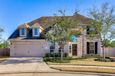 Cypress Single Family Home For Sale: 10802 Lake Raven Court