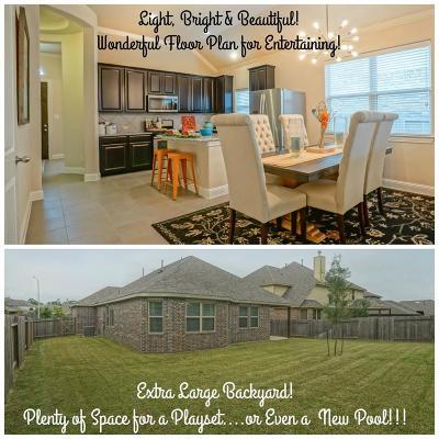 Houston Single Family Home For Sale: 13410 Lake Chesdin Road