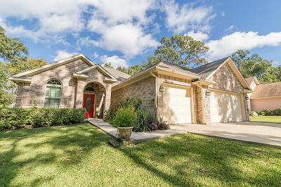 Willis Single Family Home For Sale: 12460 Pegasus Drive