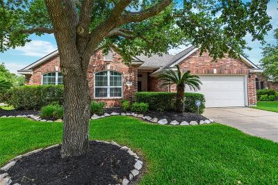 Houston Single Family Home For Sale: 6303 Indian Field Court