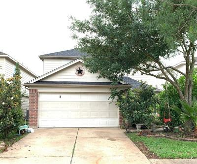 Houston Single Family Home For Sale: 5610 Basswood Dale Drive