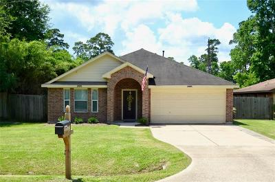 Houston Single Family Home For Sale: 418 Cherry Valley Drive