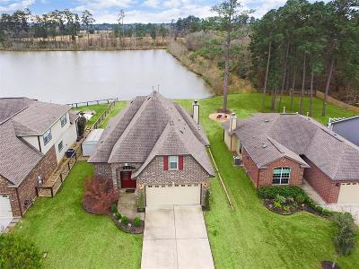 Conroe Single Family Home For Sale: 12041 La Salle River Road